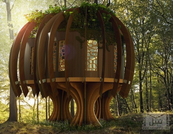 BlueForestQuietTreehouse5